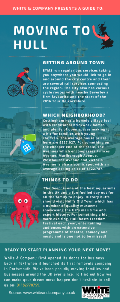 Removals Hull Infographic