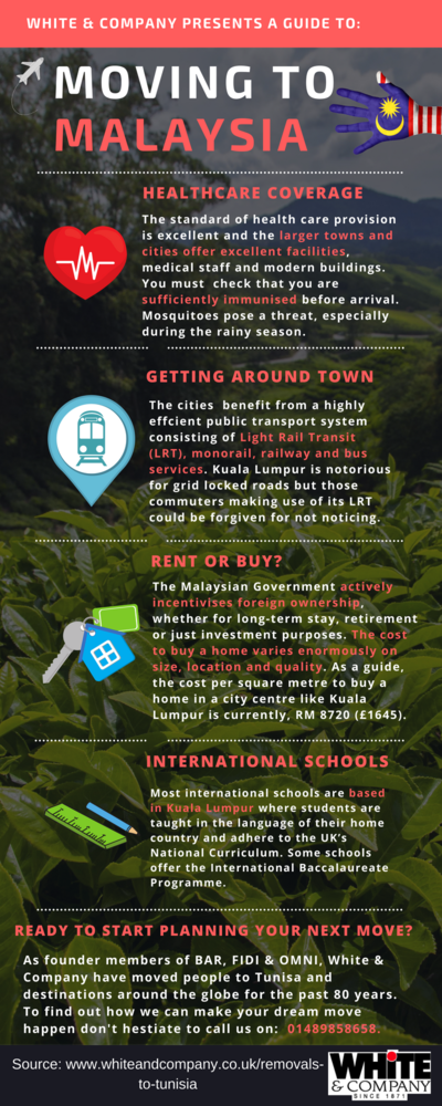 Removals to Malaysia Infographic