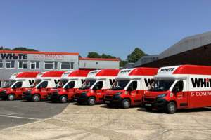 A line up of low floor Luton bodied vans in the livery of White & Company removals