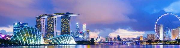 Expat's Guide to Living In Singapore