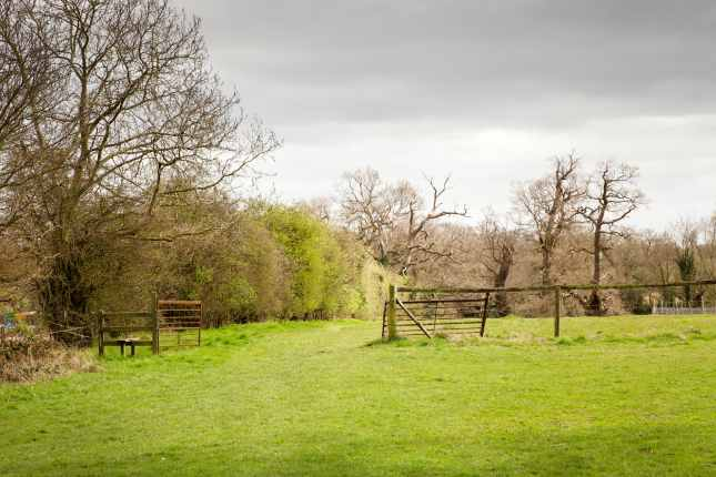 countryside landscape in essex