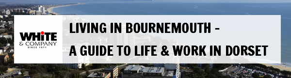 Living in Bournemouth – A Guide to Life & Work in Dorset